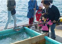 釣り情報画像